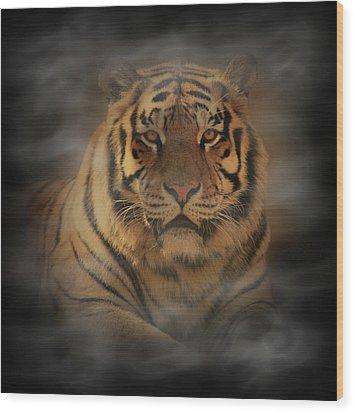 Tiger Wood Print by Sandy Keeton