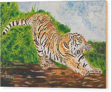Tiger Stretching Wood Print by Valerie Ornstein