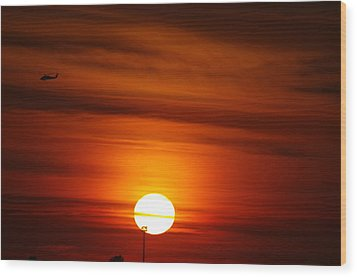 Tiger Sunset Wood Print by Don Prioleau