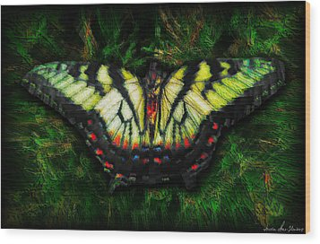 Wood Print featuring the photograph Tiger Swallowtail by Iowan Stone-Flowers