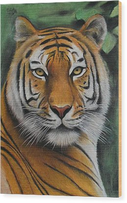 Tiger - The Heart Of India Wood Print