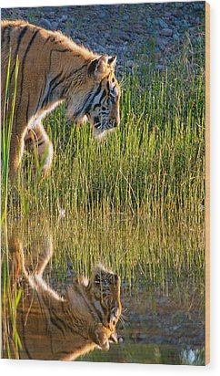 Tiger Tiger Burning Bright Wood Print by Melody Watson