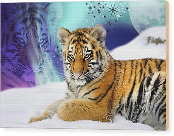 Tiger Treasures Wood Print by Julie L Hoddinott