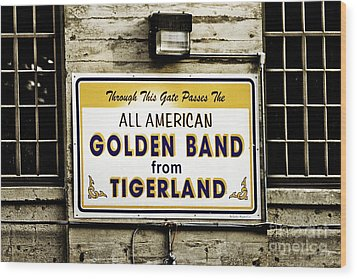 Tigerland Band Wood Print by Scott Pellegrin