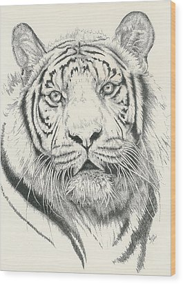 Tigerlily Wood Print by Barbara Keith