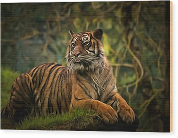 Wood Print featuring the photograph Tigers Beauty by Scott Carruthers