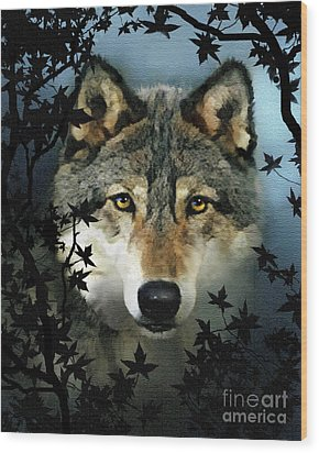 Timber Wolf Wood Print by Robert Foster