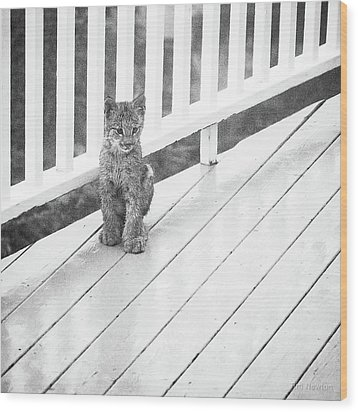 Time Out Bw Wood Print