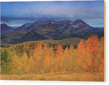 Wood Print featuring the photograph Timpanogos With Golden Aspens. by Johnny Adolphson
