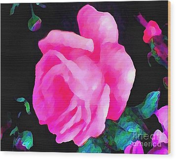 Wood Print featuring the painting Tinged Pink Rose by Catherine Lott