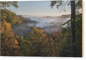 Wood Print featuring the photograph Tinkers Creek Gorge Overlook by Dale Kincaid