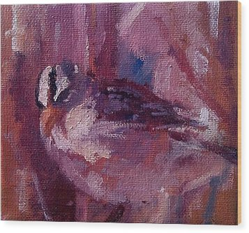 Tiny Bird Study #1 Wood Print by Brian Kardell