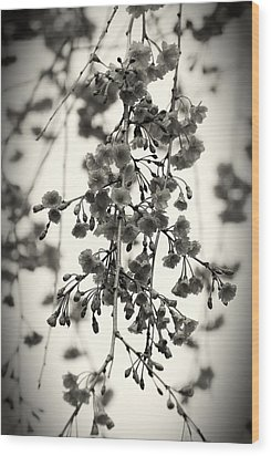 Tiny Buds And Blooms Wood Print
