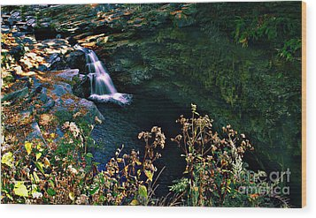 Wood Print featuring the photograph Water Falls by Raymond Earley