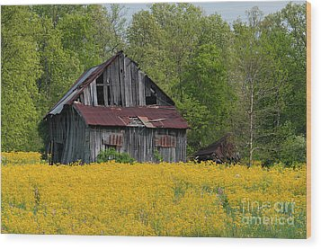 Wood Print featuring the photograph Tired Indiana Barn - D010095 by Daniel Dempster