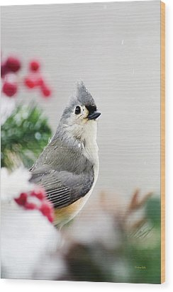 Wood Print featuring the photograph Titmouse Bird Portrait by Christina Rollo
