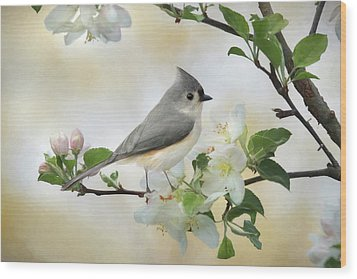 Wood Print featuring the mixed media Titmouse In Blossoms 1 by Lori Deiter