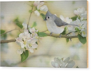 Wood Print featuring the mixed media Titmouse In Blossoms 2 by Lori Deiter