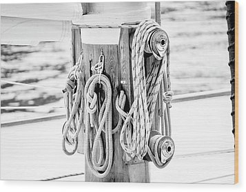 To Sail Or Knot Wood Print by Greg Fortier
