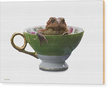 Toad In A Teacup Wood Print by Ron Jones