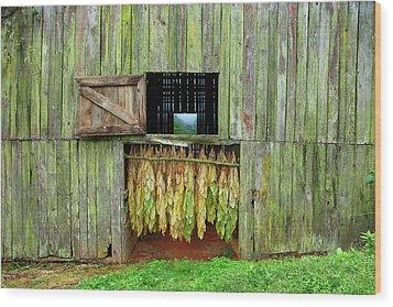 Tobacco Barn Wood Print by Ron Morecraft