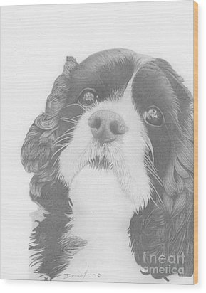 Toby Wood Print