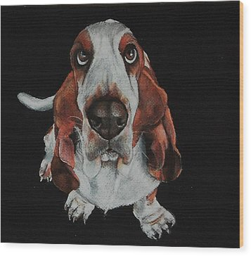 Toby Was All Ears Wood Print