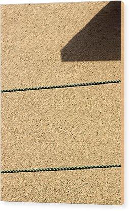 Together Yet Apart Wood Print by Prakash Ghai
