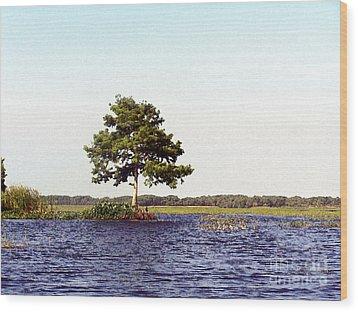 Toho Paints Wood Print by Jack Norton