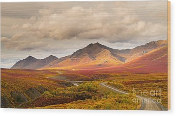 Tombstone Territorial Park Yukon Wood Print by Rod Jellison
