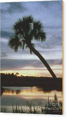 Tomoka River Sunset Wood Print by Dodie Ulery
