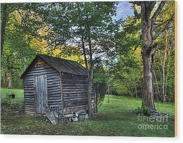 Toolshed Wood Print by Pete Hellmann