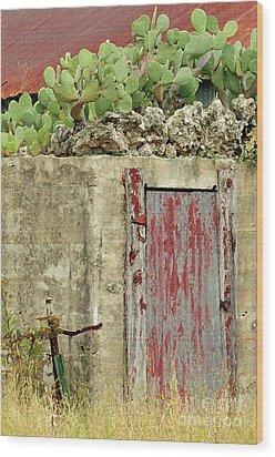 Wood Print featuring the photograph Top Heavy by Joe Jake Pratt