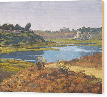 Top Of The Back Bay Wood Print by Mark Lunde