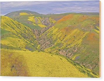 Wood Print featuring the photograph Top Of The Temblor Range by Marc Crumpler