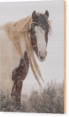 Topeka In Winter Wood Print