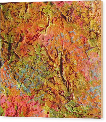 Topographical Map Color Poem Wood Print