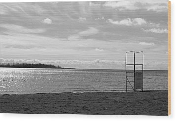 Wood Print featuring the photograph Toronto Winter Beach by Valentino Visentini