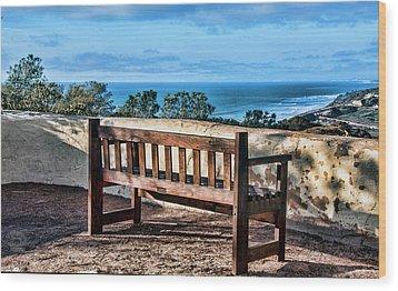Torrey Pines View Wood Print by Daniel Hebard