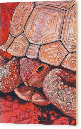 Tortoise Wood Print by Bonnie Kelso