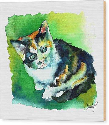 Tortoise Shell Kitten Wood Print by Christy  Freeman