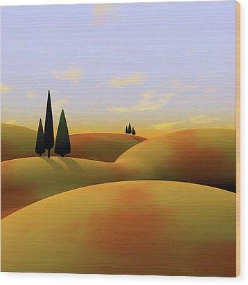 Toscana 3 Wood Print