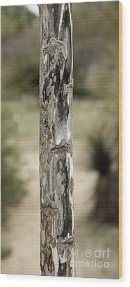 Wood Print featuring the photograph Totem Pole  by Viktor Savchenko