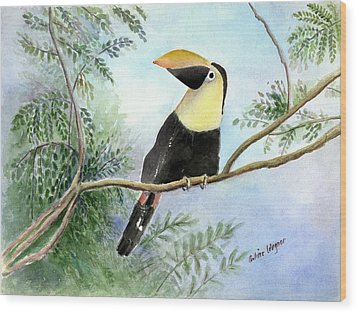 Toucan Wood Print by Arline Wagner