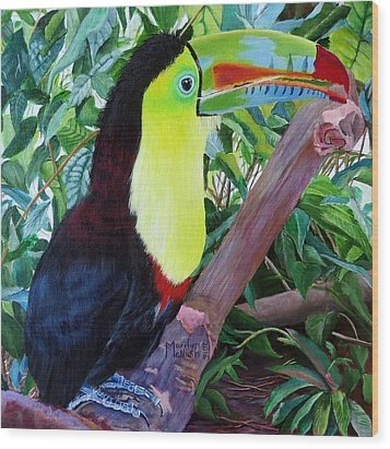 Toucan Portrait 2 Wood Print by Marilyn McNish