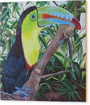 Toucan Portrait Wood Print