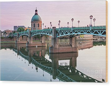 Wood Print featuring the photograph Toulouse At Sunset by Elena Elisseeva