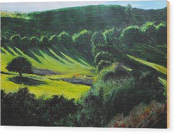 Towards Corwen Wood Print
