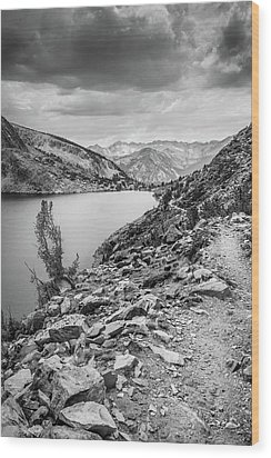 Wood Print featuring the photograph Towards The Silver Divide by Alexander Kunz