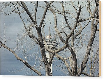 Wood Print featuring the photograph Tower And Trees by Valentino Visentini